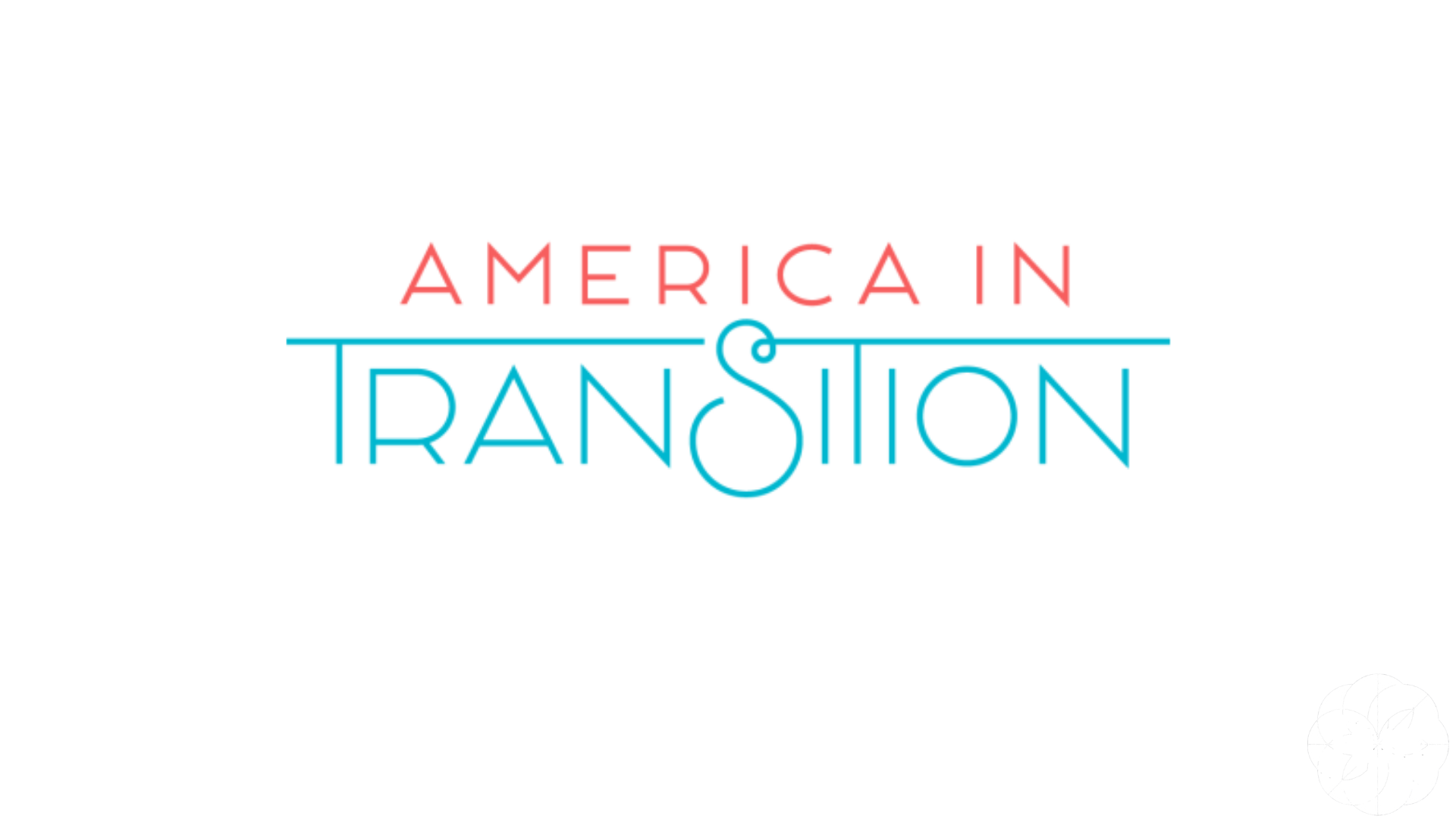 America in Transition Logo